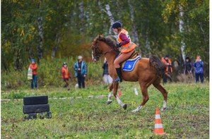В Челябинске появится конное подразделение поисково-спасательного отряда «ЛизаАлерт»